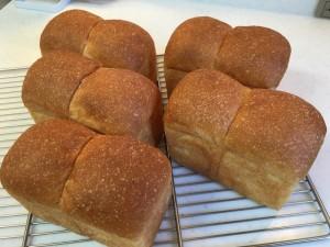 パン 食パン2